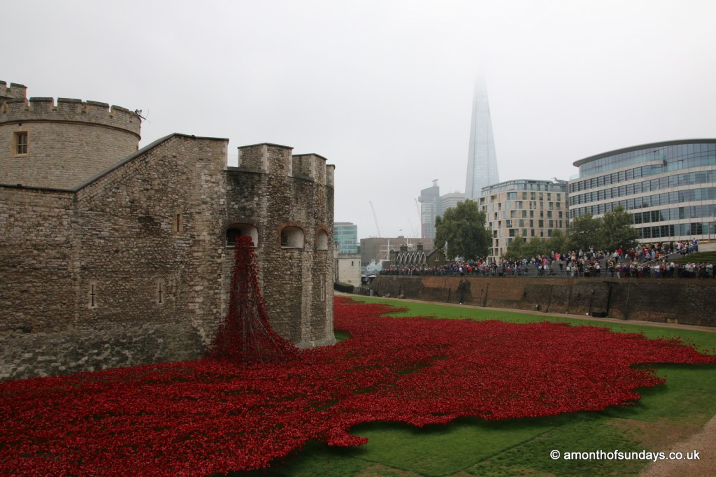 Poppy flood at Tower of London