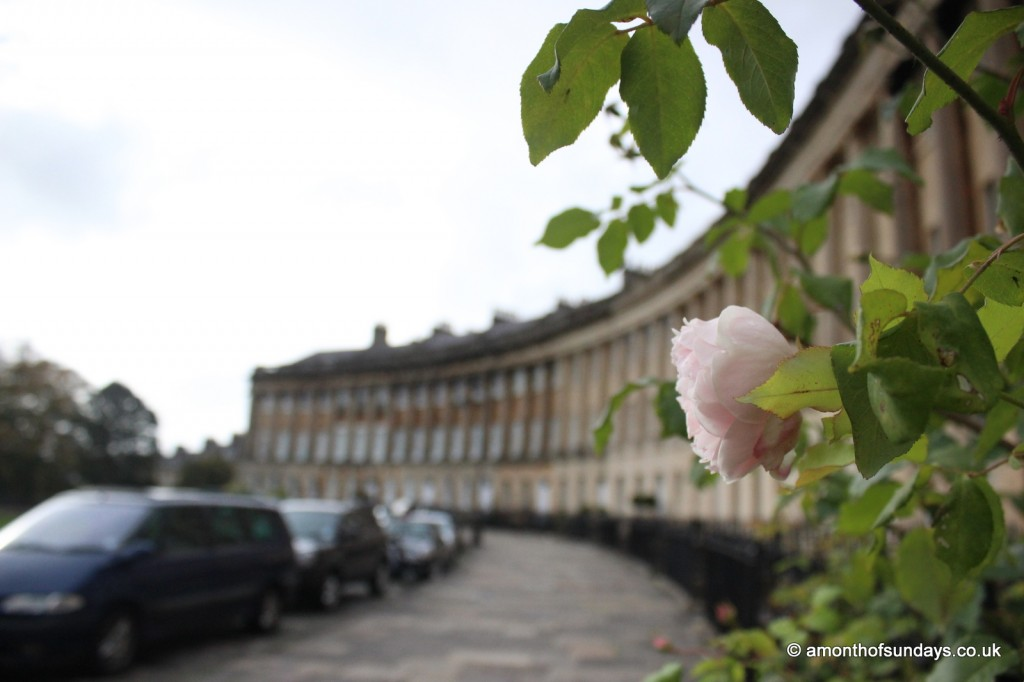 Royal Crescent with rose