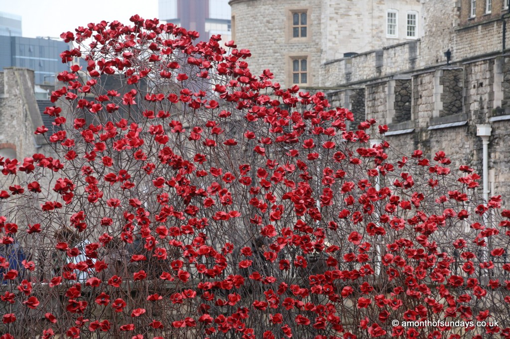 Wave of poppies at the Tower of London