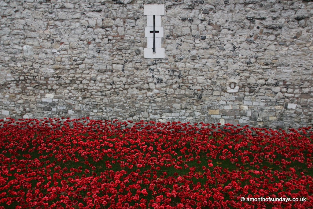 Poppies against the wall at the Tower of London