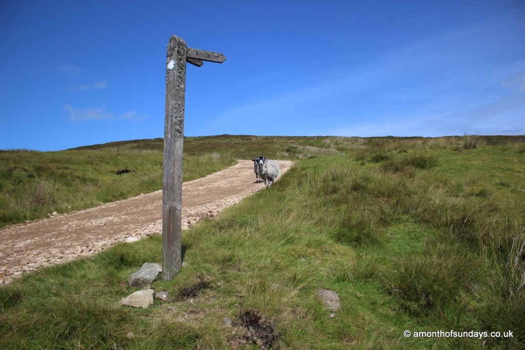 Swaledale walk