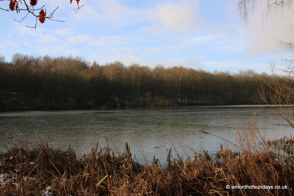 Wintry view over lake