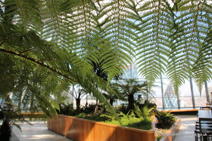 Inside 20 Fenchurch Street (Sky Garden)